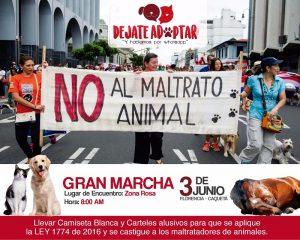 ¡Todos contra el maltrato animal!