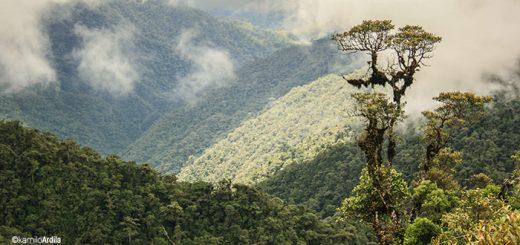 Cordillera Oriental, Florencia Caquetá Fotografía KamiloArdila