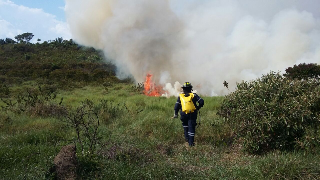 Alarma por incendios forestales en el Caquetá