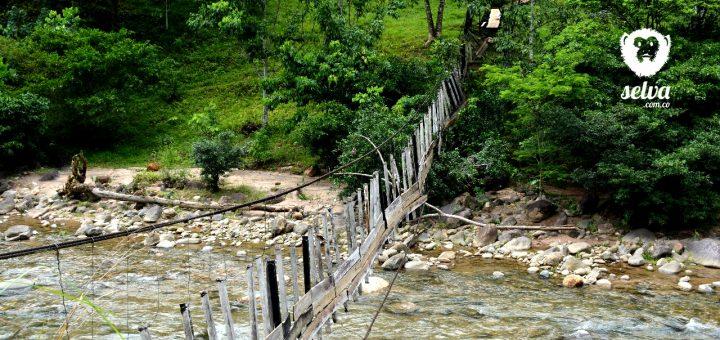 Puente colgante que colapsó en la quebrada la Yuca, vereda Damas Abajo
