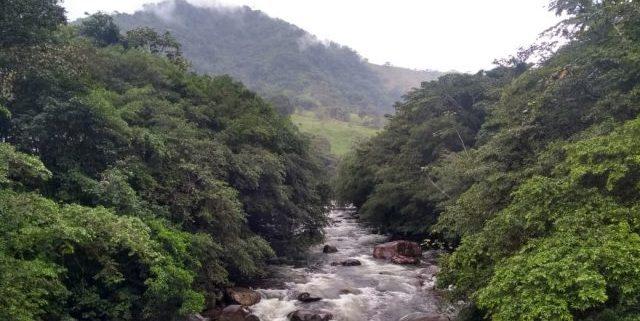 El periodismo ambiental está cojo en Colombia