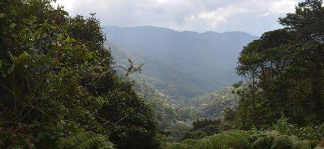 En el corregimiento del Danubio Corpoamazonía socializó la declaratoria del nuevo parque natural regional Picachos Miraflores