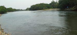 El mercurio envenena los peces del río Caquetá
