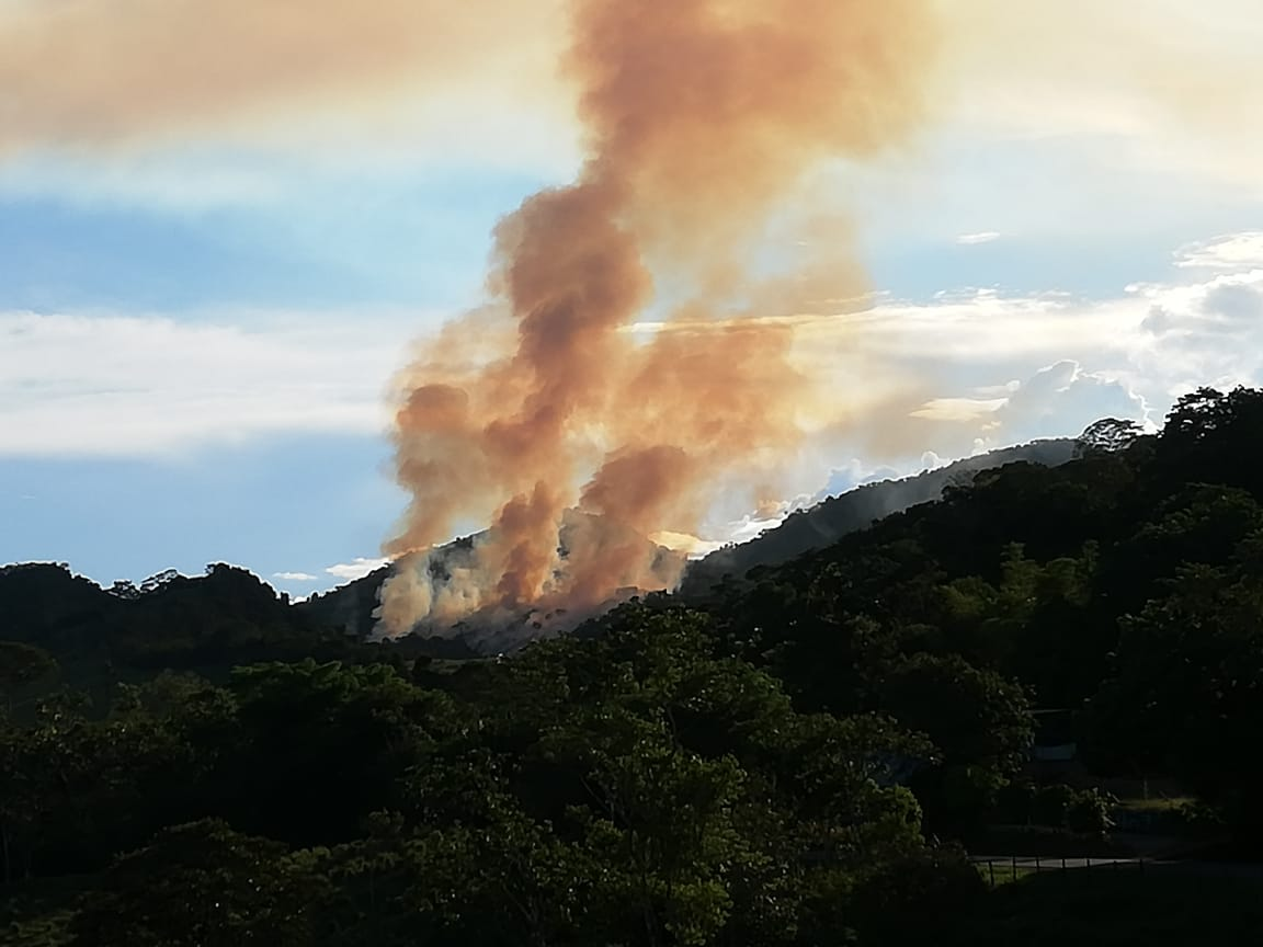 Incendio forestal en parte alta de Belén